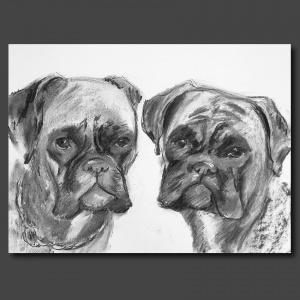 portrait de chiens au fusain à partir de photo