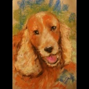 Portrait d'animal aux pastels secs